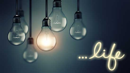 Light Up Your Life image